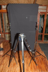 This is a very quick and dirty setup. The two stands are placed opposite of each other. There's a black cloth hanging from a reflector stand as background. The tripod for the camera is in the middle between the two stands some distance off.